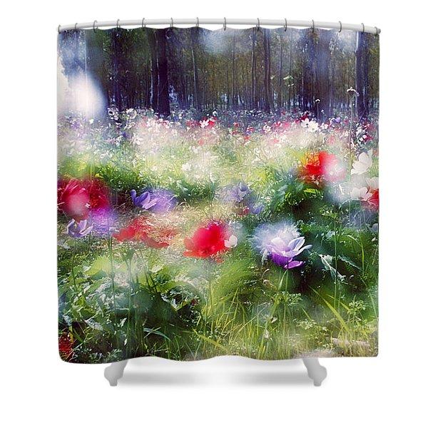 Impressionistic Photography At Meggido 2 Shower Curtain
