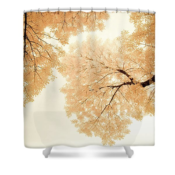 Shower Curtain featuring the photograph Impressions Of October by John De Bord