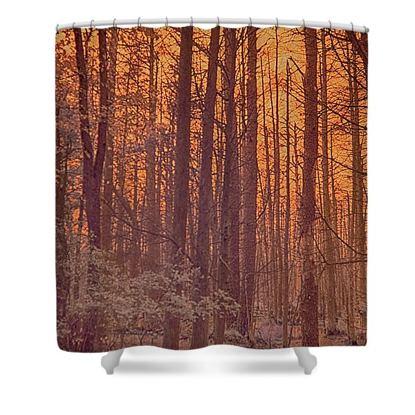 Home Of The Jersey Devil Shower Curtain