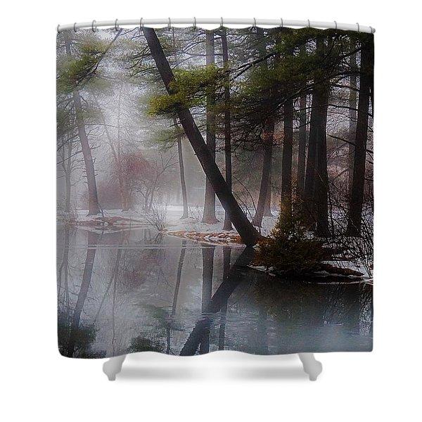 In A Fog Shower Curtain
