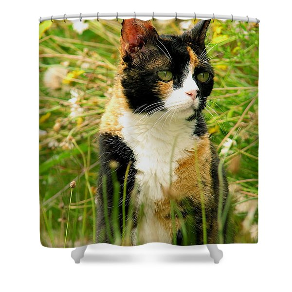 In Her Element Shower Curtain