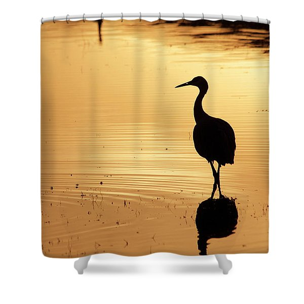 Shower Curtain featuring the photograph In Love Again by Michael Lucarelli