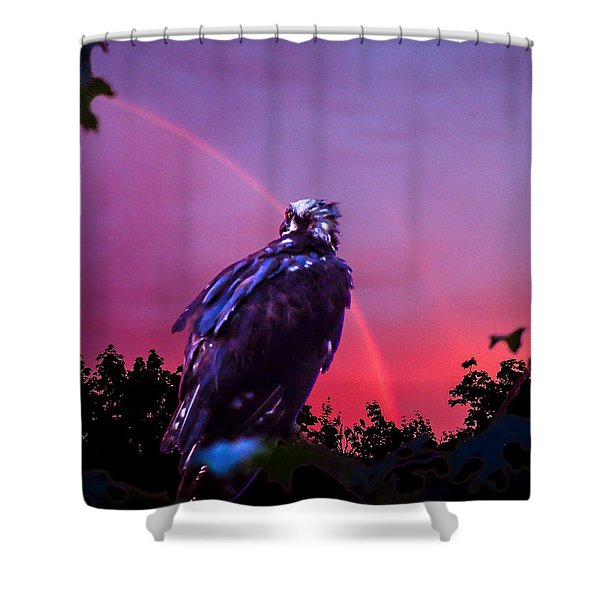 In The Eye Of A Hawk Shower Curtain