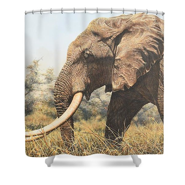 Shower Curtain featuring the painting In The Footsteps Of Elders by Alan M Hunt
