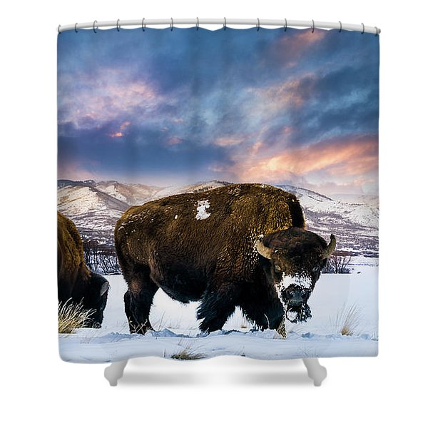 In The Grips Of Winter Shower Curtain