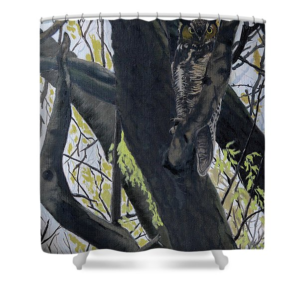 In The Shadow-ojibway Great Horn Owl Shower Curtain