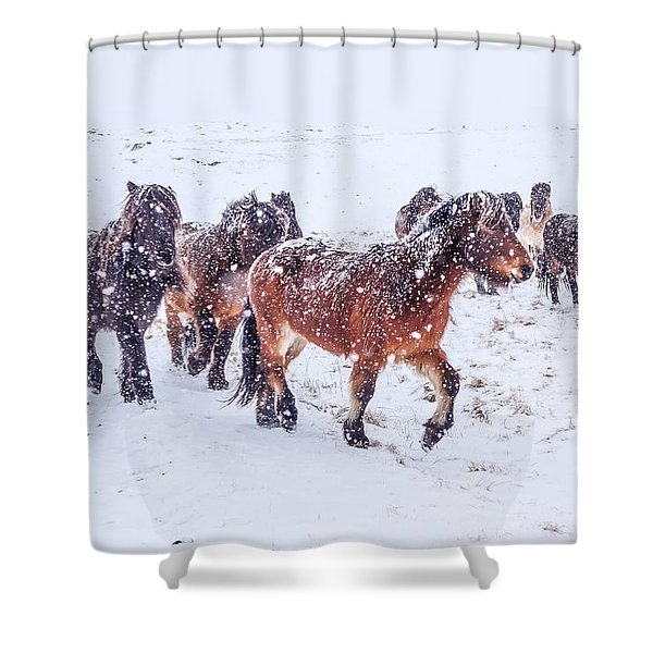 In The Storm 2 Shower Curtain