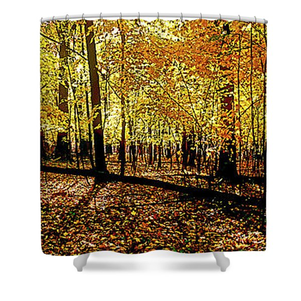 In The The Woods, Fall  Shower Curtain