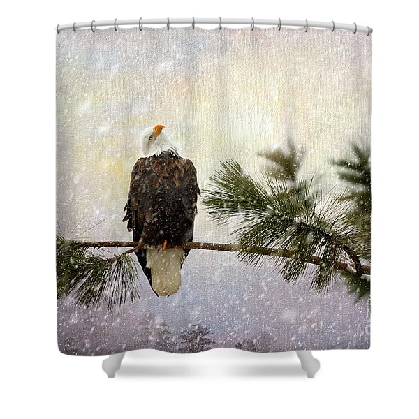 In The Twilight Glow Shower Curtain