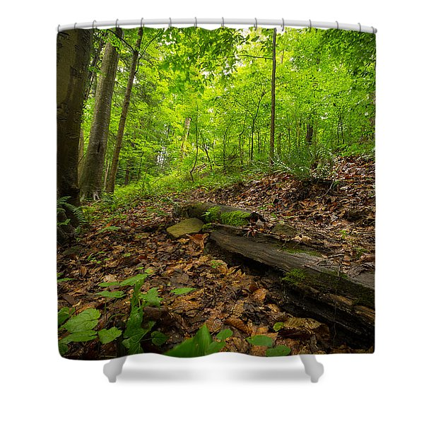 In The Woods_2 Shower Curtain