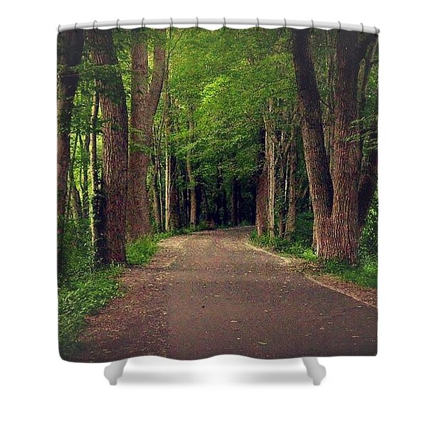 In To The   Deep Dark Woods  Shower Curtain