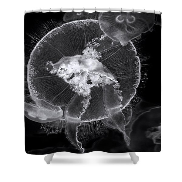 Incoming Bw Shower Curtain