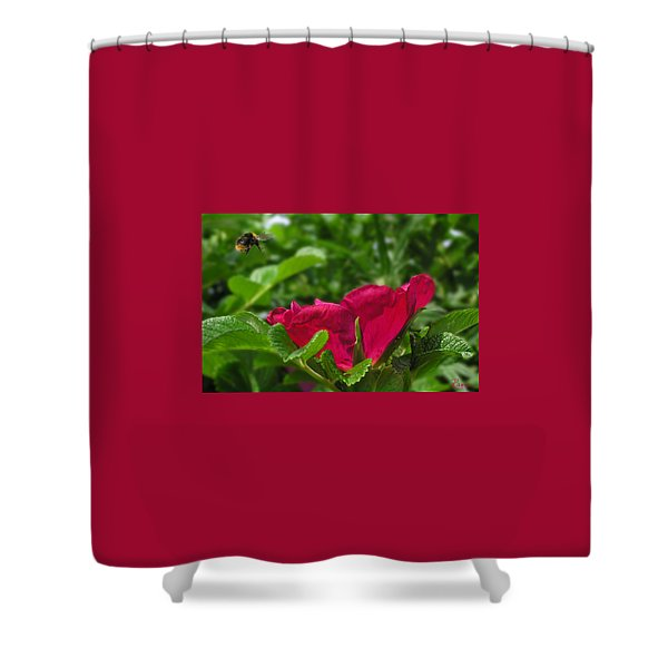 Incoming Rose Shower Curtain