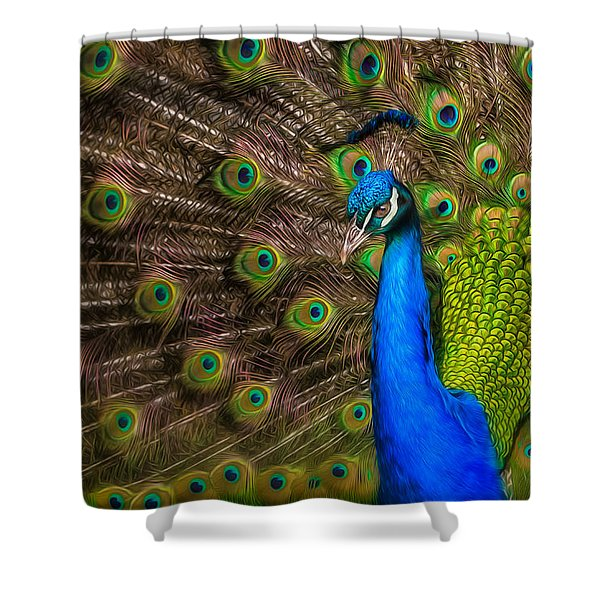 India Blue Shower Curtain