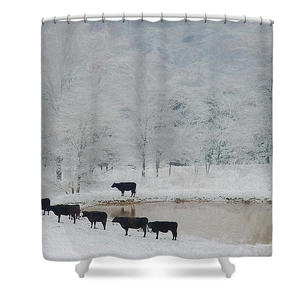 Indian File Shower Curtain