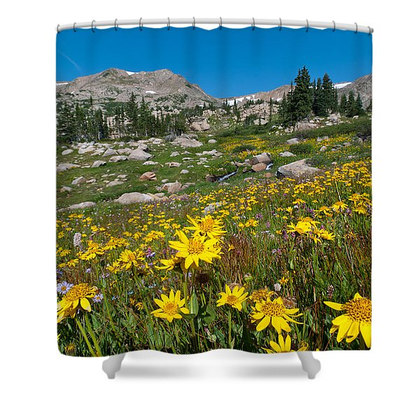 Indian Peaks Summer Wildflowers Shower Curtain