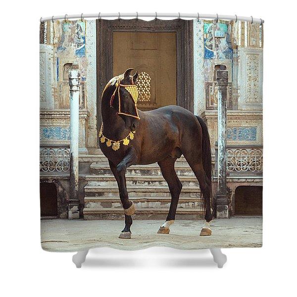 Indian Treasure Shower Curtain