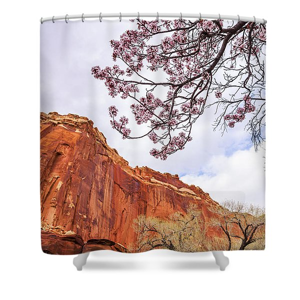 Individually Shower Curtain