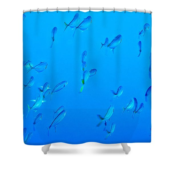 Infinite Blue Shower Curtain
