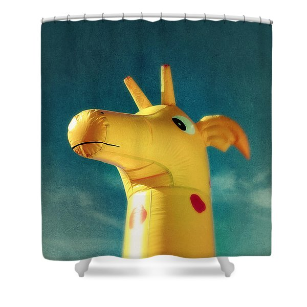 Inflatable Toy Shower Curtain