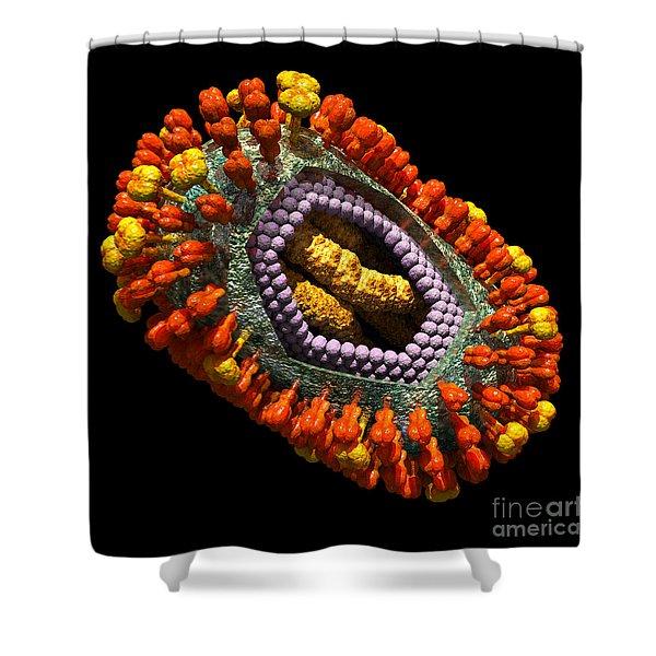Influenza Virus Cutaway 5 Shower Curtain