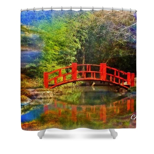 Inner Bridges Shower Curtain