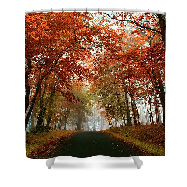 Inner Line Road At Valley Forge Shower Curtain
