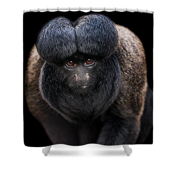Inquisitive  Shower Curtain