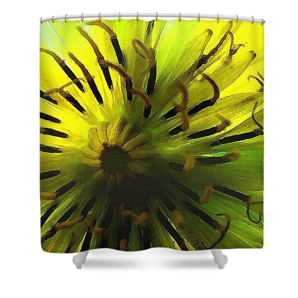 Inside A Yellow Goatsbeard  Shower Curtain