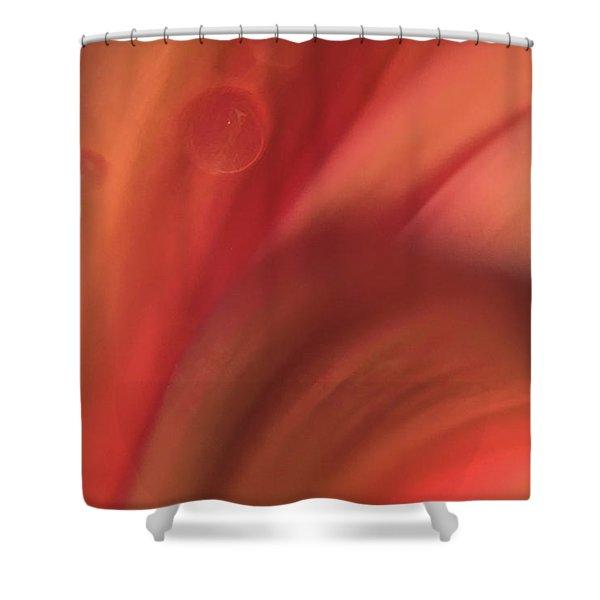 Inside Jupiter, Artists Rendition Shower Curtain