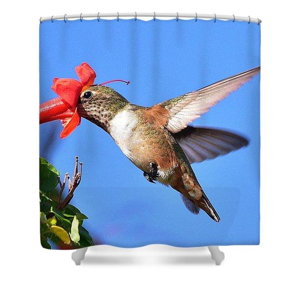 Inside The Flower Shower Curtain