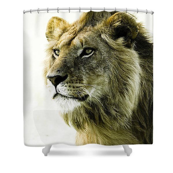 Intensity Shower Curtain by Michele Burgess