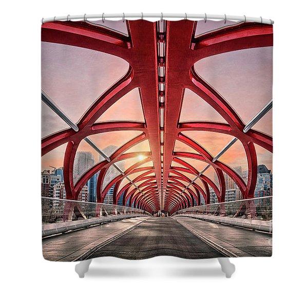 Interdimensional Travel Shower Curtain