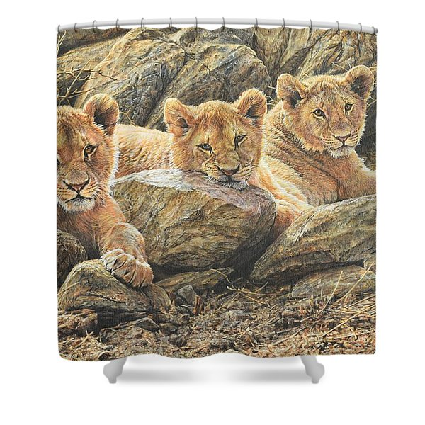 Shower Curtain featuring the painting Interrupted Cat Nap by Alan M Hunt