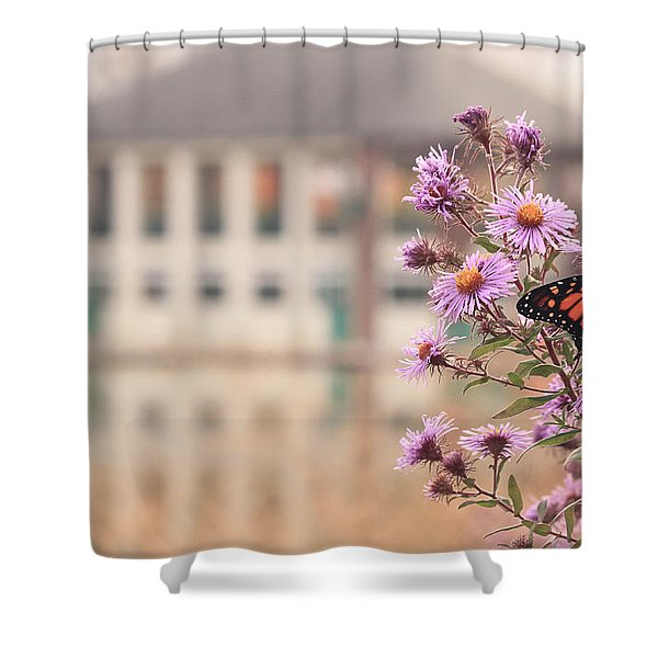 Into The Asters Shower Curtain