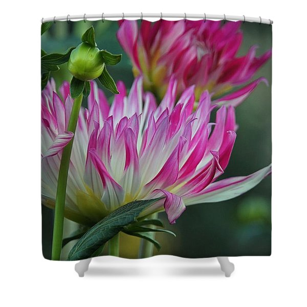 Into The Garden Shower Curtain