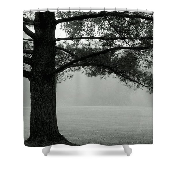 Into The Grey Wide Open Shower Curtain