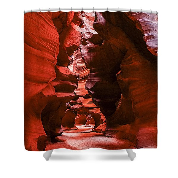 Into The Maze Shower Curtain