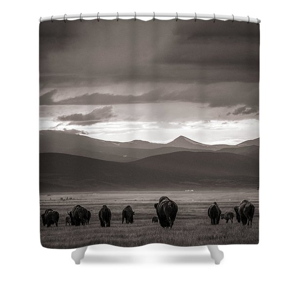 Into The Sunset - Bw Shower Curtain