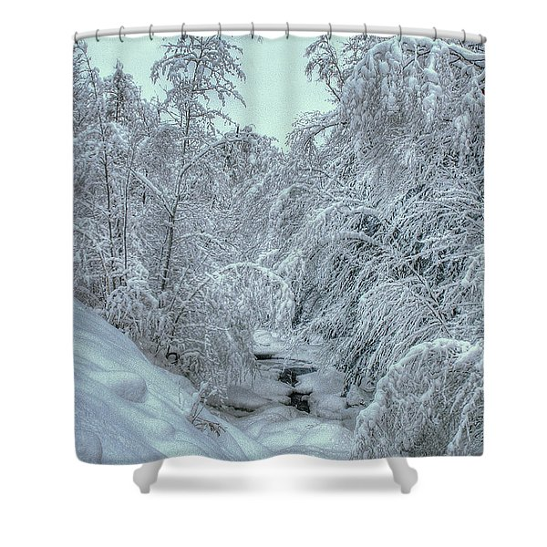 Into White Shower Curtain