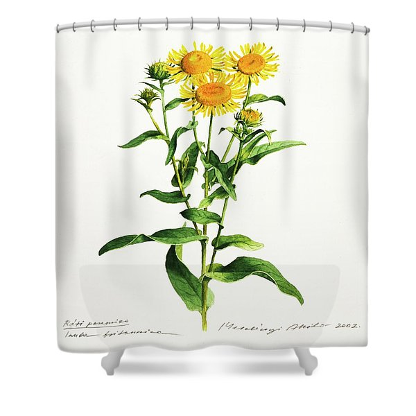 Inula Shower Curtain