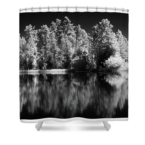 Invisible Reflection Shower Curtain