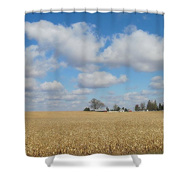 Iowa 3 Shower Curtain