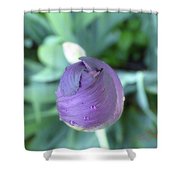 Iris After The Rain V Shower Curtain