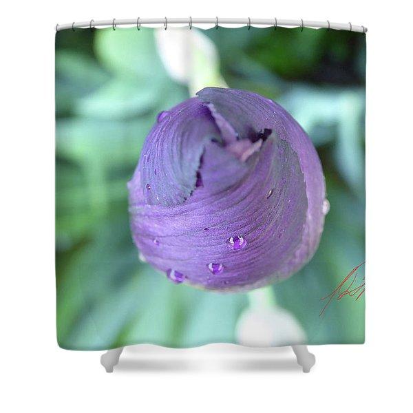 Iris After The Rain Vi Shower Curtain