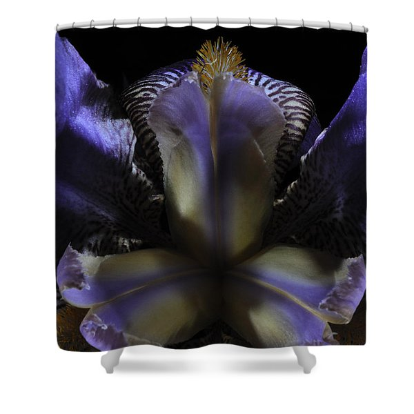 Iris Aglow Shower Curtain