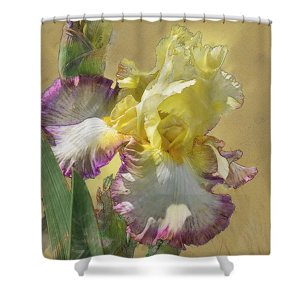 Iris, 'kiss Of Kisses' Shower Curtain