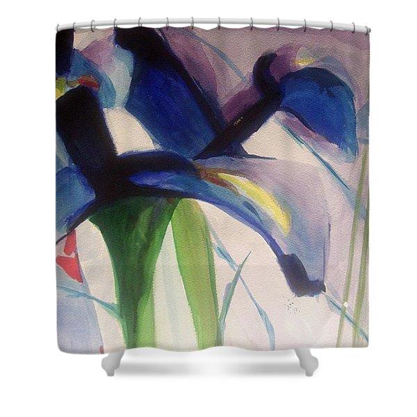 Iris  Power Shower Curtain