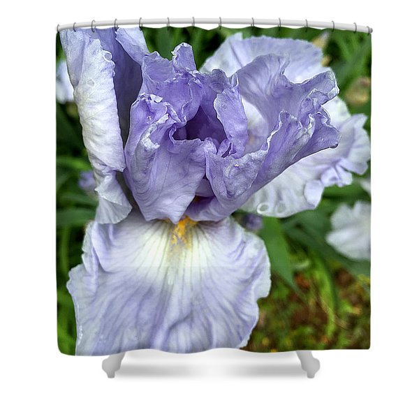 Shower Curtain featuring the photograph Iris Up Close by Robert G Kernodle