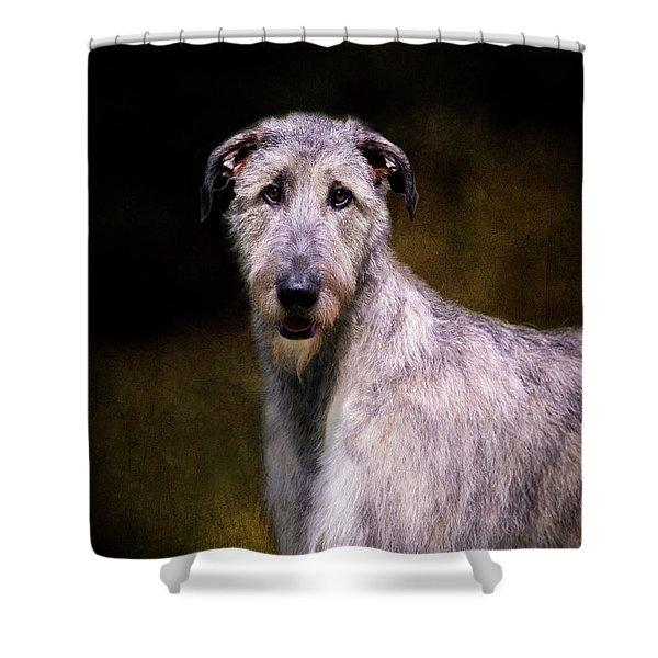 Irish Wolfhound Portrait Shower Curtain